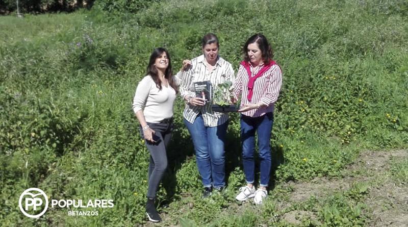 Cecilia Vázquez impulsará la creación de un vivero de árboles autóctonos en San Martiño